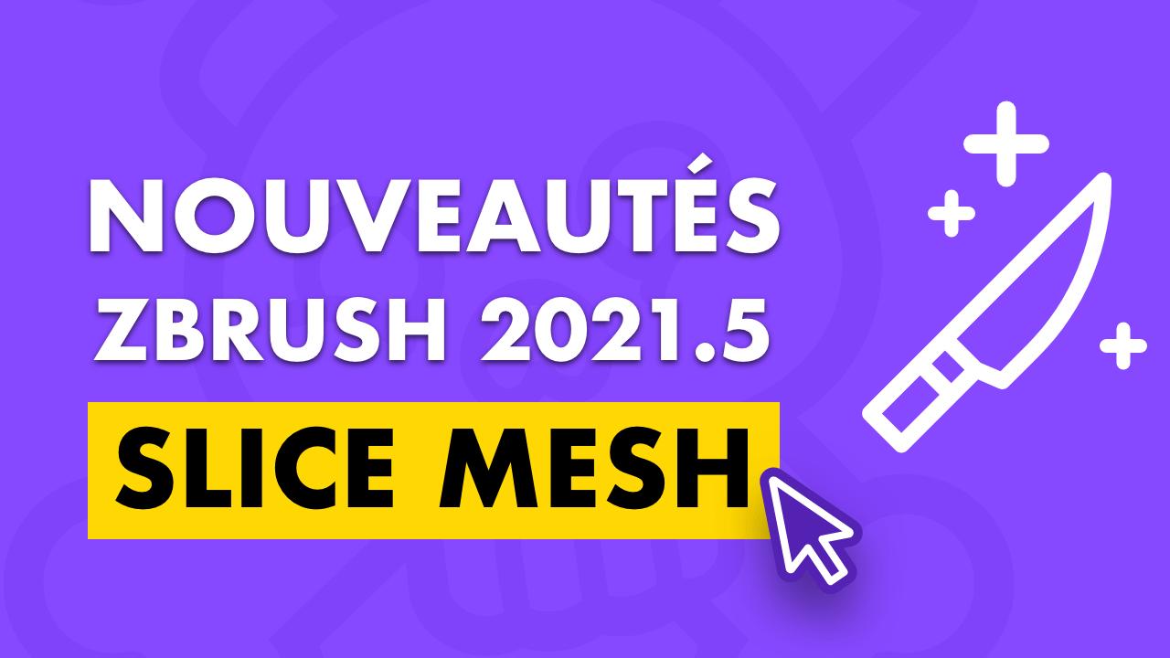 Bannière pour l'article sur le slice mesh, nouveauté de ZBrush 2021.5